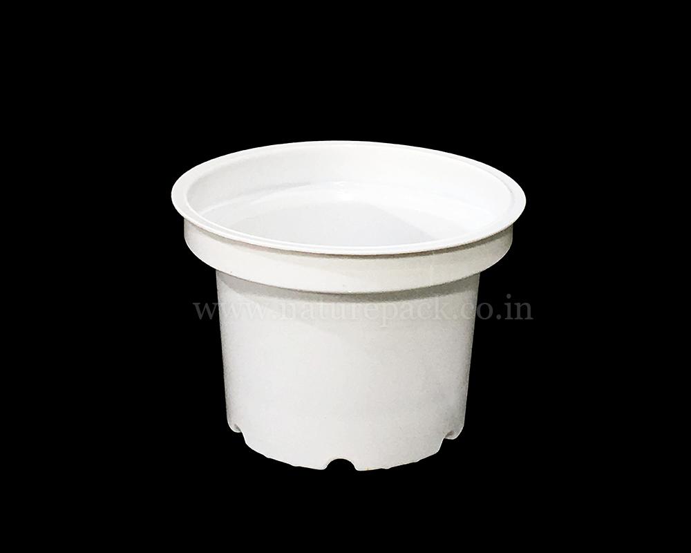 100ml White Cup